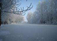 Sütő László - Téli nap