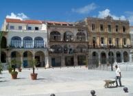 Havanna utcáin - Orbán József