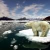 Jégnélküli nyár elé nézhet a Jeges-tenger?