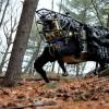 A DARPA intelligens robotot tervez