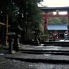 Fuji Mester Bölcs Szandálja