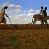 Gigantikus vízkészleten ül Afrika