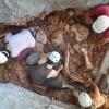 Százezer éves elefántcsontvázat találtak Barcelona közelében