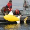 Robothal keresi a szennyeződéseket