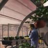 Zöldséget termesztenének kínaiak a Marson