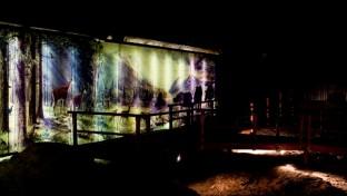 Márciusban nyit az Ipolytarnóci Ősmaradványok Természetvédelmi Terület