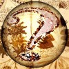 A kultúrtörténet máig legrejtélyesebb dokumentuma: a Voynich-kézirat