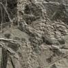 Ritka őslénymaradványok Tirolban