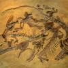 Évmilliárdokkal ezelőtt záptojásszagú volt a Föld