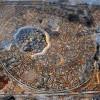 Ezerötszáz éves mozaikpadlóra bukkantak Izraelben