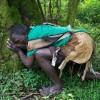 Uganda új utakon