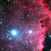 Hétbolygós naprendszert fedezetek fel európai csillagászok