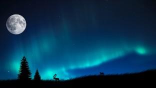 Aurora Borealis: az éjszaka tüneménye