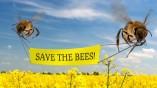 265 milliárd eurós baby – avagy fogadj örökbe egy méhet!